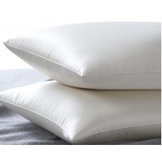 Silk Camel luxury / ultimate Silk Pillow (thin version)