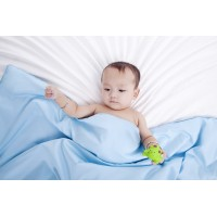 Silk Camel  portable travel mini and standard baby/kid's Silk Throw Blanket